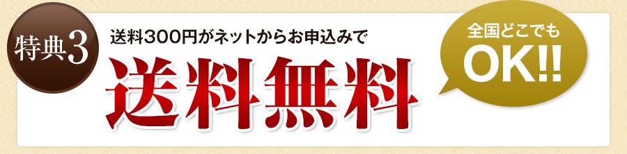 特典3:送料無料 全国どこでもOK!!