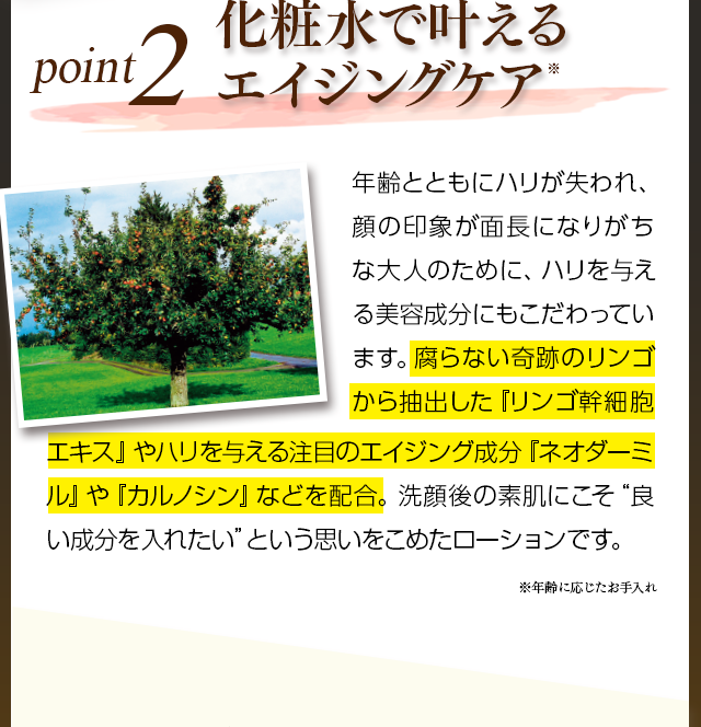 POINT2エイジングケア