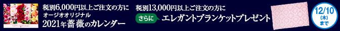 X'mas特別キャンペーン2大プレゼントをご用意!
